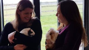 Clare and Sophie cuddling the guinea pigs